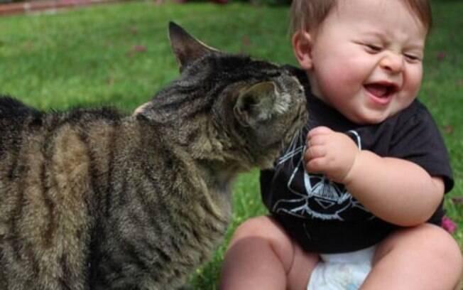 Como fazer para que felinos e crianças tenham uma boa relação!