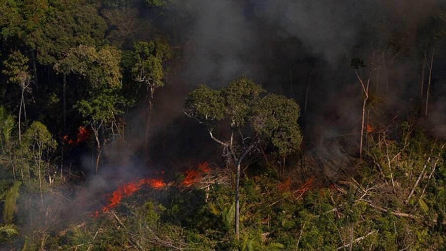 Entidades ambientais apontam que Brasil apresentou recorde de queimadas nos últimos dois anos