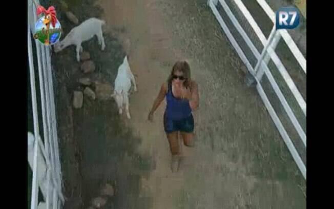 Raquel corre atrás das cabras