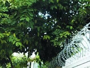 É comum encontrar casas com grades e cercas tipo concertina