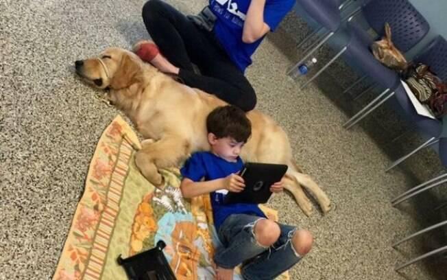Post que mostra filho de Shanna Niehaus deitado sobre 'cão terapeuta' teve mais de 200 mil compartilhamentos