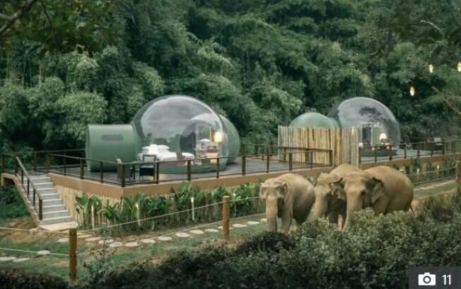 O Anantara Golden Triangle Elephant Camp & Resort inclui a observação de elefantes