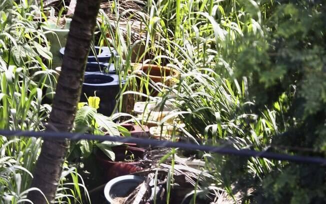 Foco de dengue: vasos sanitários abandonados na zona oeste da capital. Foto: Fernanda Dias/Agência O Globo