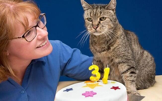 Nutmeg acaba de completar 31 anos e é o gato mais velho do mundo