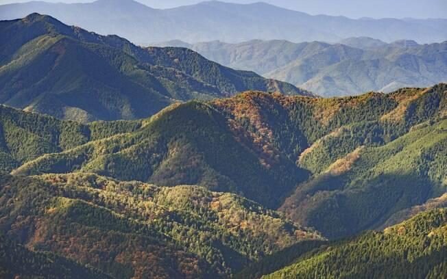 Koyasan, no Japão, é um local indicado para o turista que quer viver um turismo gastronômico vegetariano ou vegano