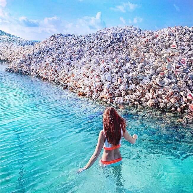 ilha das conchas