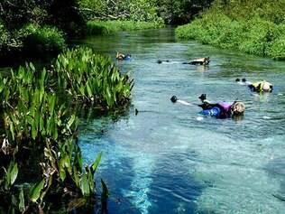 Flutuação no rio Sucuri é uma das mais populares atividades em Bonito