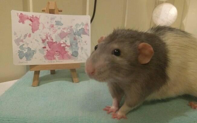 rato ao lado de mini quadro