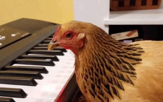 A galinha Jogku
