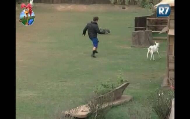 Thiago Gagliasso corre atrás de cabra na manhã desta quinta (25)