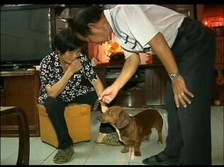 Na China, cão late dando respostas a contas