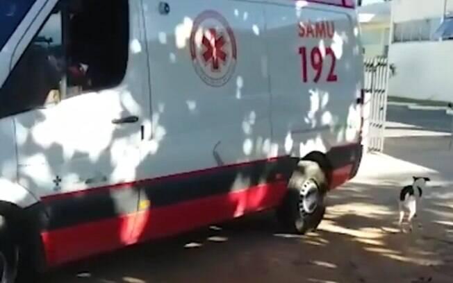Petruchio seguiu a ambulância por mais de 4 quilômetros