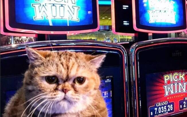 Felícia em casino de Montevidéu, onde se passa parte do filme