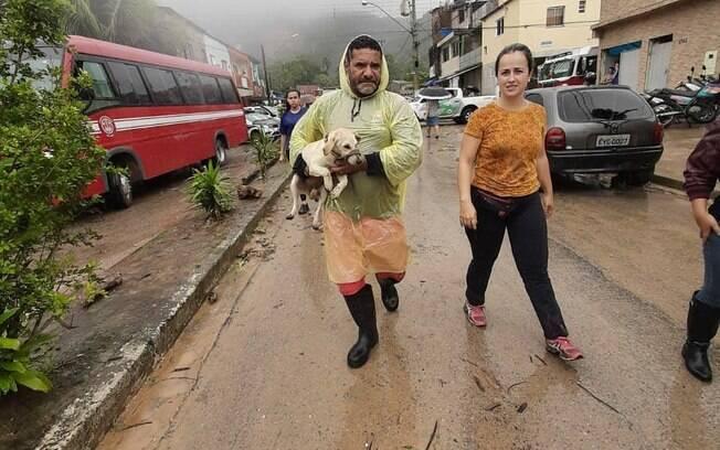 Cadela resgatada em Guarujá