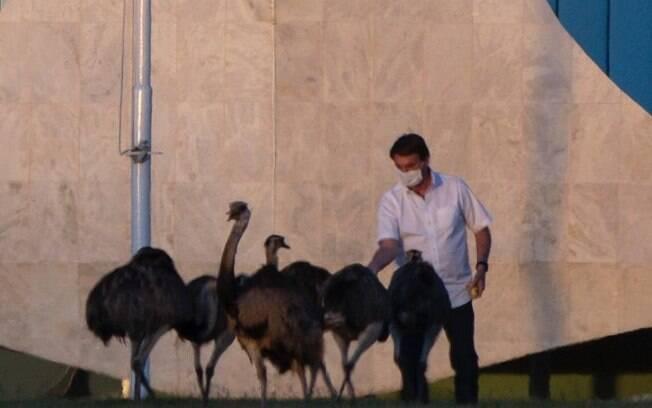 Bolsonaro em isolamento no Palácio da Alvorada