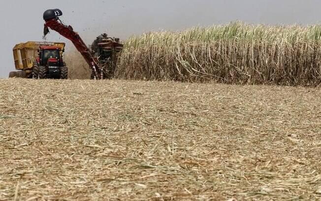 Açúcar será exportado com menos impostos