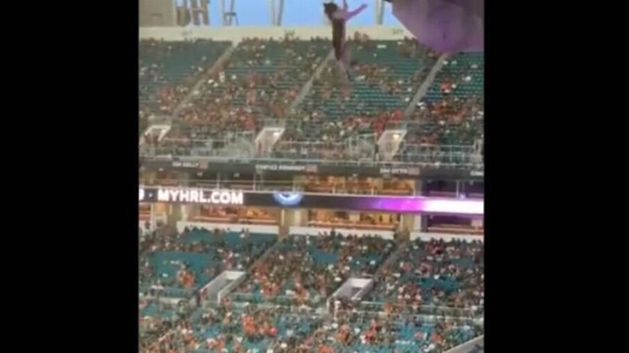 Gatinho fica pendurado em arquibancada de estádio e é salvo por torcedores