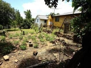 Uma das hortas cultivadas na divisa do terreno condenado pelo Ministério Público de Triunfo