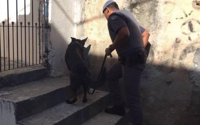 Droga foi encontrada em um buraco pelo Cão Nitro conduzido e treinado pelo Soldado PM Souza
