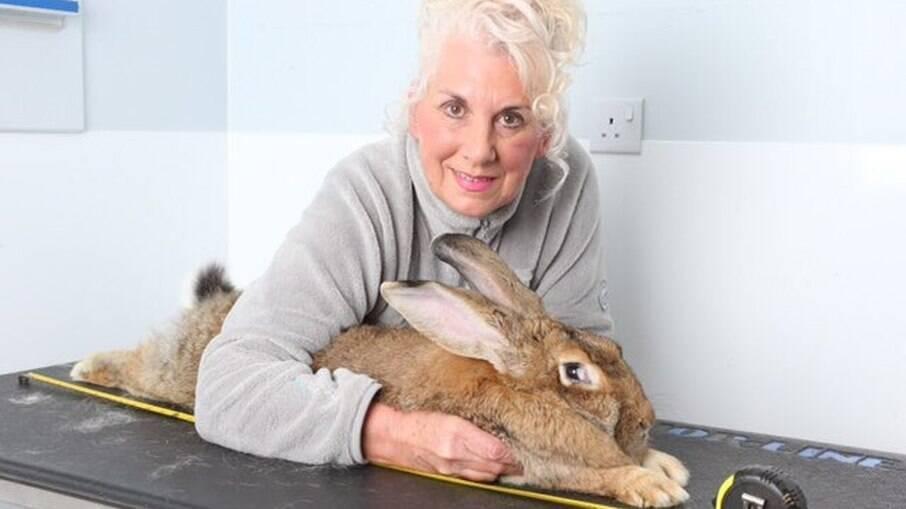 Annette Edwards e seu coelho Darius