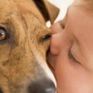 Para que o cão receba bem o bebê, comece a prepará-lo desde o início da gravidez