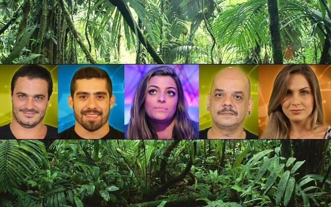 O grupo do quarto da selva...