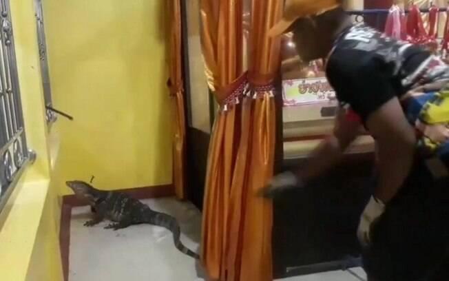 O animal parecia estar procurando por comida quando entrou no prédio religioso