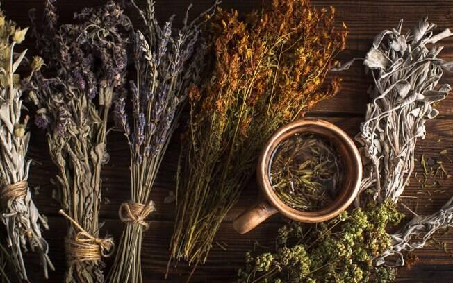 Conheça alguns tipos de banho de ervas e suas funções