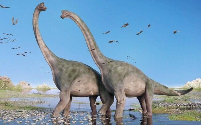 As pegadas de dinossauro provavelmente foram deixadas por um grupo de saurópodes que habitava a Costa Jurássica