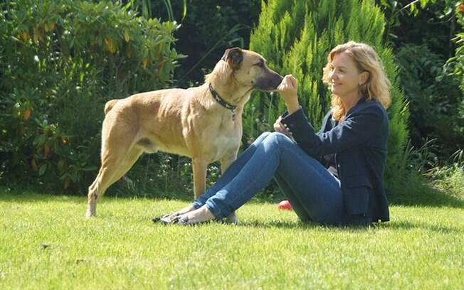 Hoje Rubio mora junto com Rubia na Alemanha e é um cachorro adotado