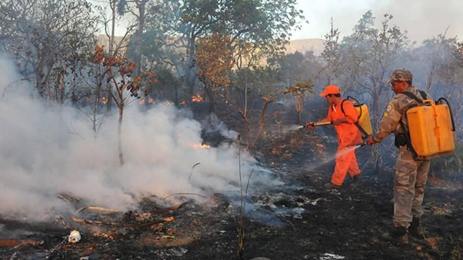 Brigadistas combatendo incêndios florestais
