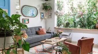 Saiba as melhores plantas e flores para cada ambiente da casa