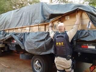 Carga estava em um caminhão e nos fundos de uma casa às margens da rodovia