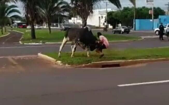 Momento em que homem foi atingido por touro em avenida de Campo Grande, em Mato Grosso do Sul.