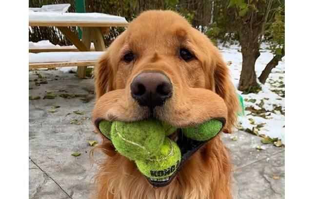 Finley consegue colocar seis bolas de tênis, ao mesmo tempo, na boca