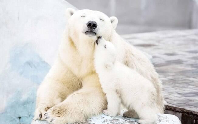 Dá um beijinho na mamãe