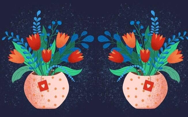 Vasos autoirrigáveis: solução prática para cuidar das plantas