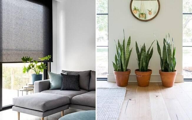Com algumas dicas, é possível manter a casa arejada sem necessariamente precisar de um ar condicionado
