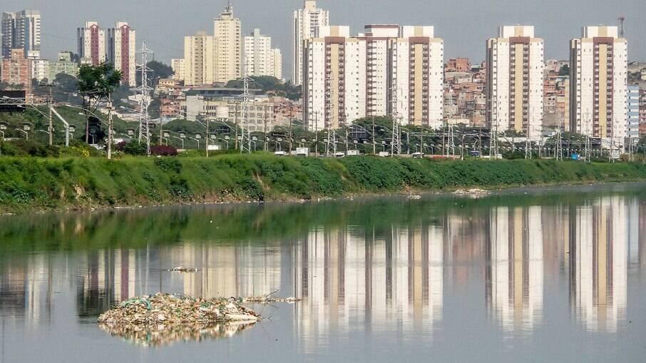Peixes podem voltar a existir no Rio Pinheiros?