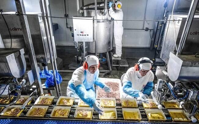 """BRF (BRFS3) investe US$ 2,5 mi em startup para produzir """"churrasco de laboratório"""""""