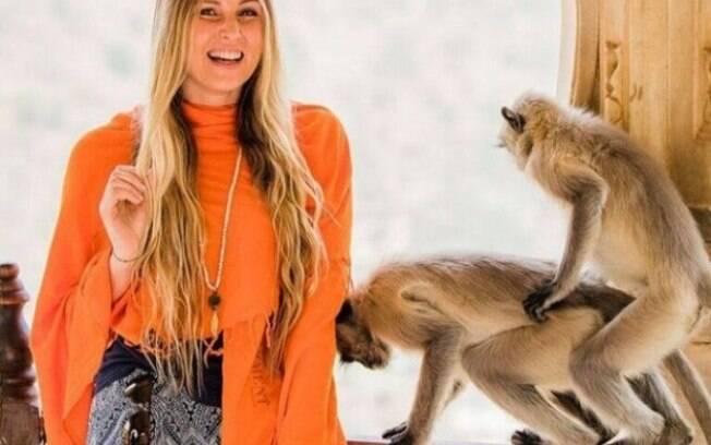 Macacos entram e cena e acasalam enquanto modelo é fotografada