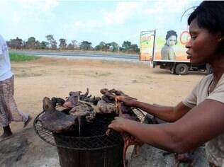 Carnes de animais contaminados trazem riscos à população no oeste da África