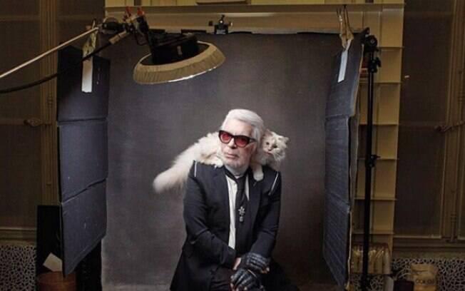 Choupette é a gata do falecido estilista Karl Langerfeld, ex-capitão da Chanel
