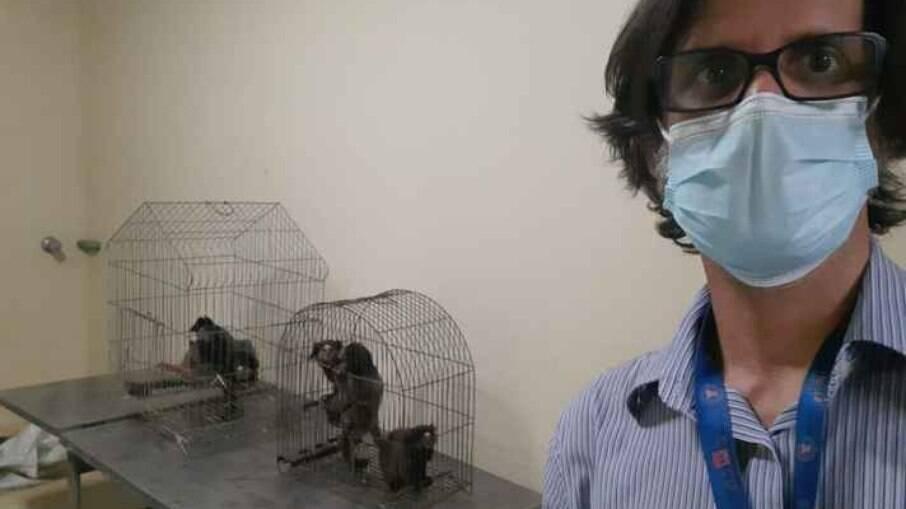 De acordo com o professor Flávio Fonseca, os animais ficaram 100% protegidos