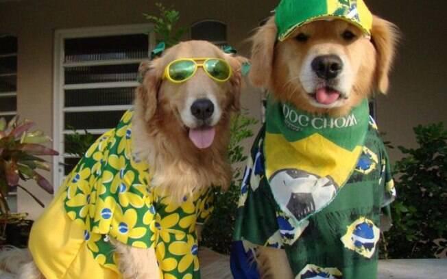 Cachorros fofos muito patriotas e fãs do feriado