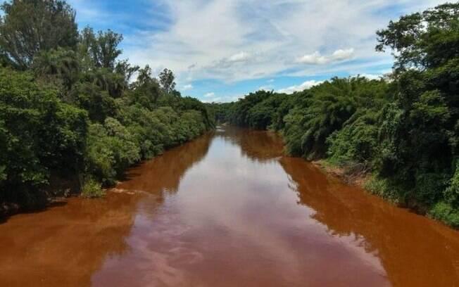 Após tragédia de Brumadinho, R$ 12,6 milhões em contas da mineradora Vale foram bloqueadas