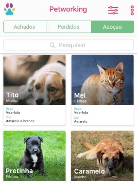O aplicativo também funciona como um ponte entre quem tem animais para doar e quem deseja adotar