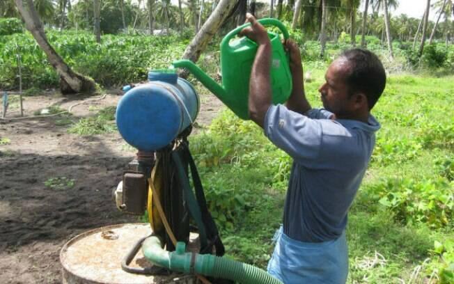 Presidente da Anvisa informou intuito de liberar todos os pesticidas da lista é forma de modernizar nicho a longo prazo.