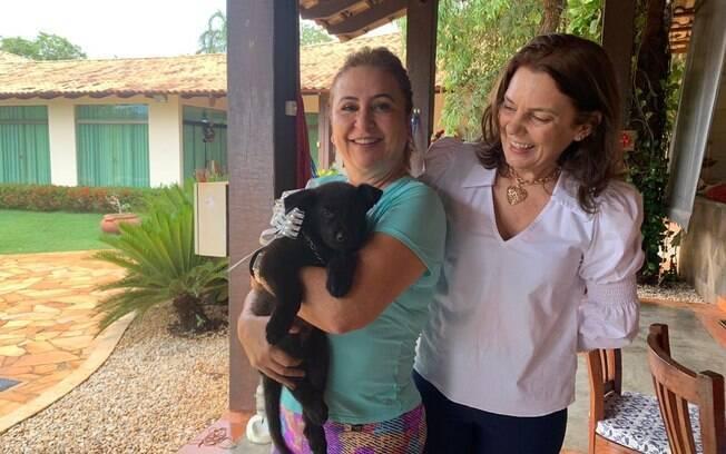 Senadora nomeou seu novo cachorro como Alok em homenagem ao DJ brasileiro