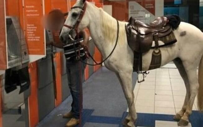 Homem levou cavalo à agência bancária no interior paulista e viralizou